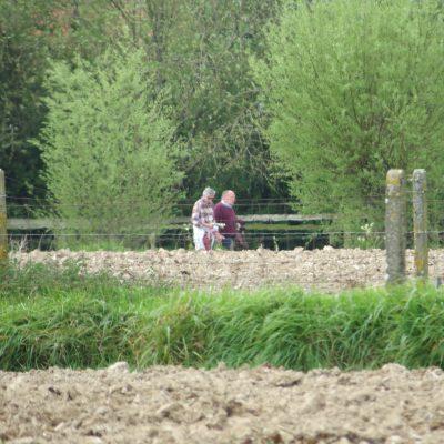 2017-04-23 Lentewandeling Bellegem (07)