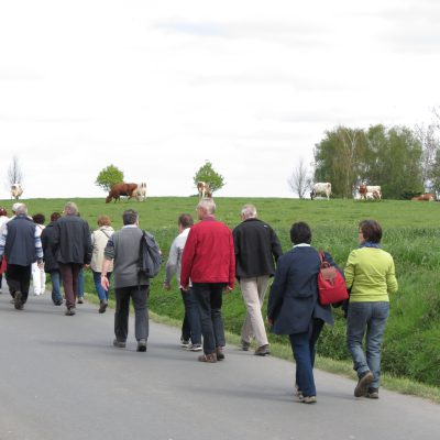 2017-04-23 Lentewandeling Bellegem (12)
